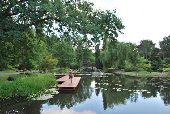 Japanese Garden - Szczytnicki Park: Walkway on the lake