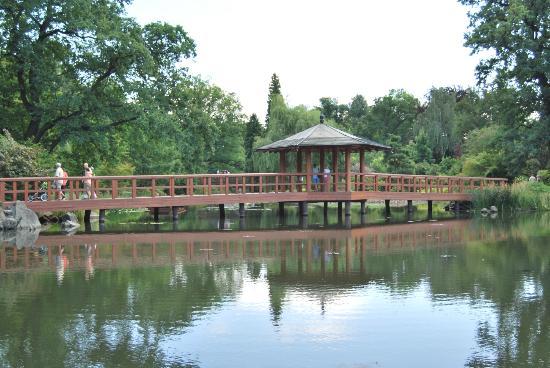 Japanese Garden - Szczytnicki Park: Walkway with pavilion