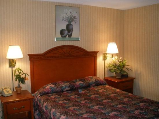 Hometown Inn (Flint): Guest room