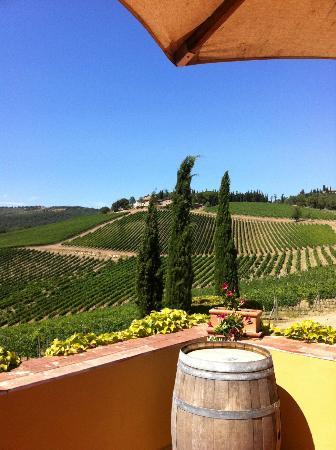 Tuscan Wine Tours by Grape Tours: The winery Villa Carfaggio, Chianti Classico