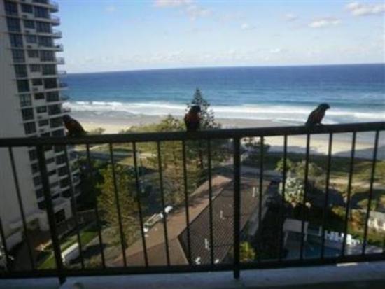 Ocean Royale: Balcony