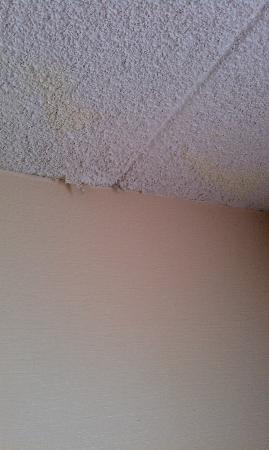 Edison Hotel: WATER DAMAGED CEILING