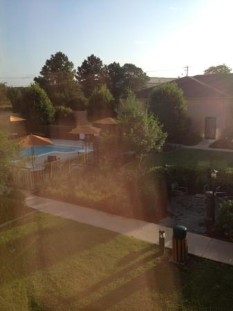 Courtyard Fayetteville: morning view of courtyard and pool, beautiful