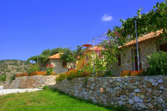 Panorama Villas: hotel and grounds