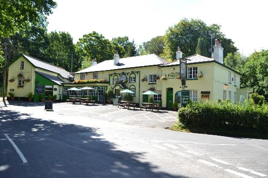 ‪‪The New Forest Inn‬: The New Forest Inn Emery Down‬
