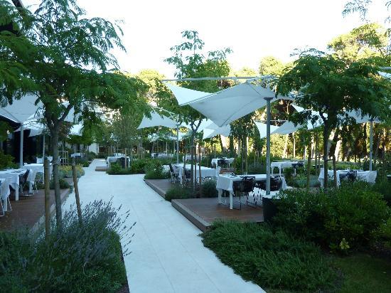 Hotel Lone: Terrasse