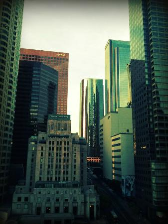 Hilton Checkers Los Angeles: View from the roof of the hotel of downtown LA