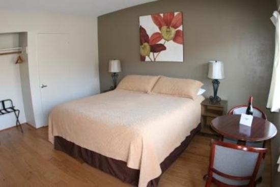 Cambria Palms Motel: Queen