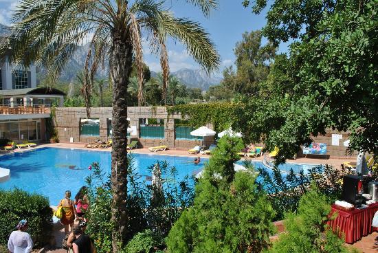 Rose Beach Residence : relax havuz