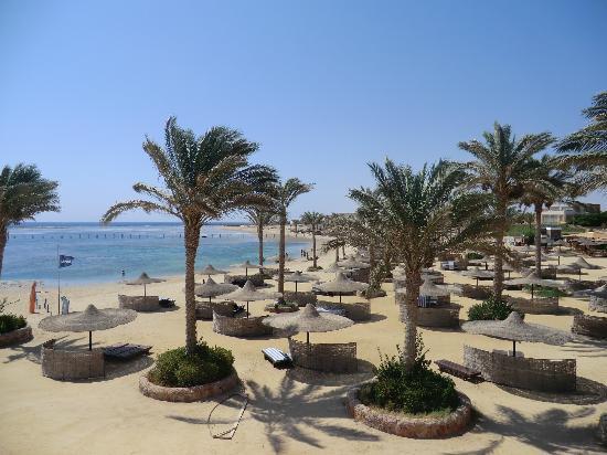 Elphistone Resort: vista spiaggia