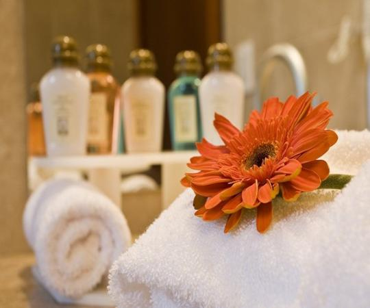 Stubel Suites and Cafe: Guest Room Amenity
