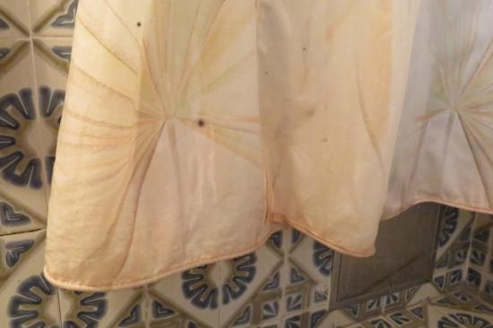 Remisens Premium Hotel Kvarner: Disgusting mouldy shower curtain