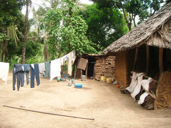Sun N Sand Beach Resort: Village life