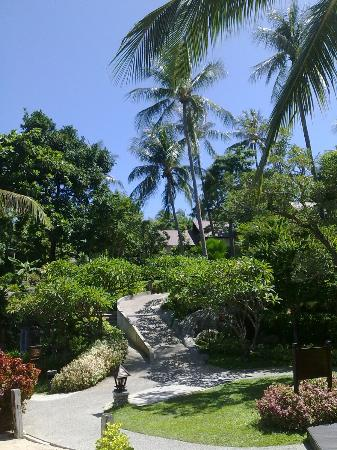 Nora Beach Resort and Spa: Garden view from beach, pool and restaurant