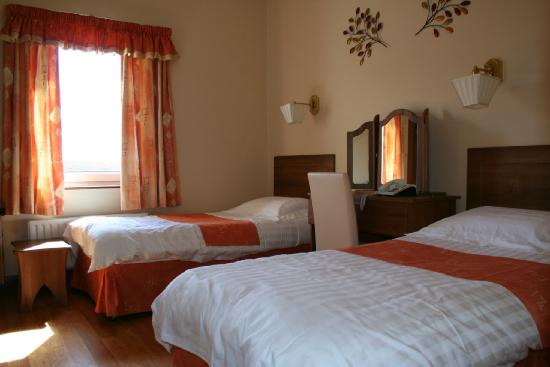Carey's Viking House Hotel: Standard Room