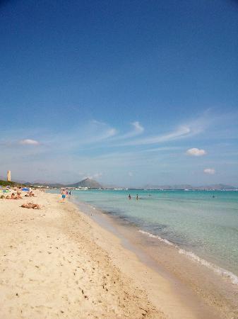 Valentin Playa de Muro : mare e spiaggia proprio davanti alla struttura 100m