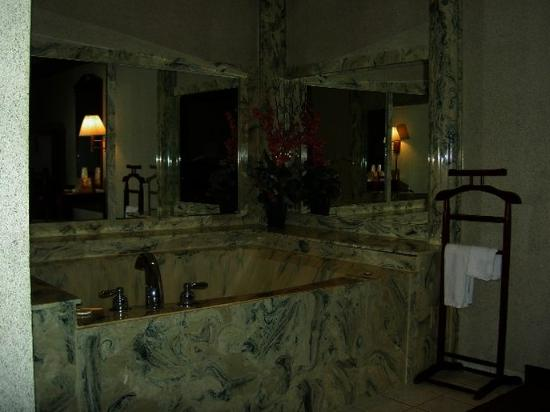 Executive Inn & Suites: Photo Jacuzzi