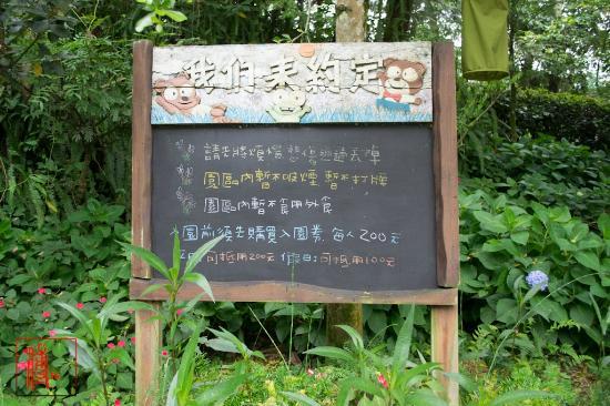 新社薰衣草公園照片