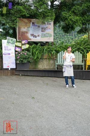 Lavendar Cottage: lavender farm
