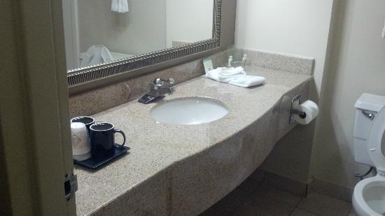 Holiday Inn Roanoke - Tanglewood: bath room
