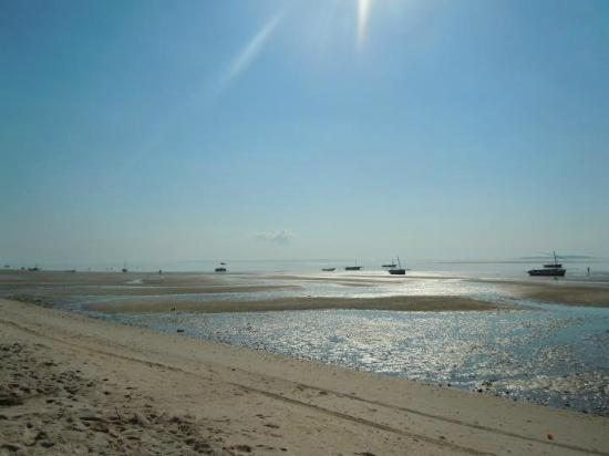 Baobab Beach Backpackers: Spiaggia davanti al Baobab