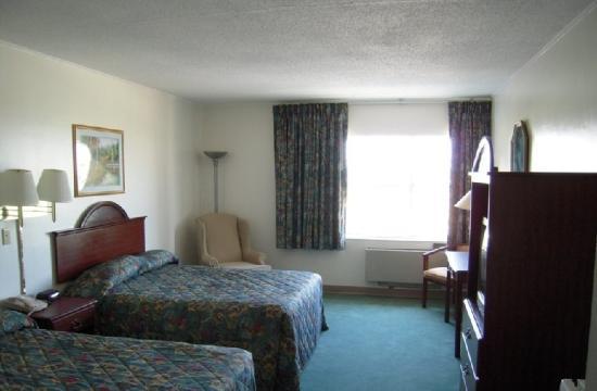 Guest Inn : Guest Room