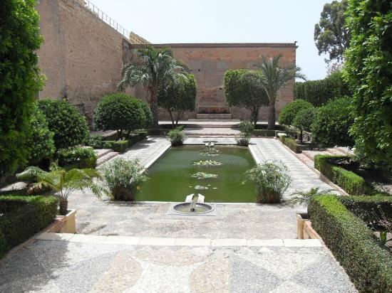 Arena Center: Alcazabar pond