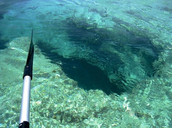Chad4Nature Tours - Private Tours : Blue Hole Kayaking and Snorkeling