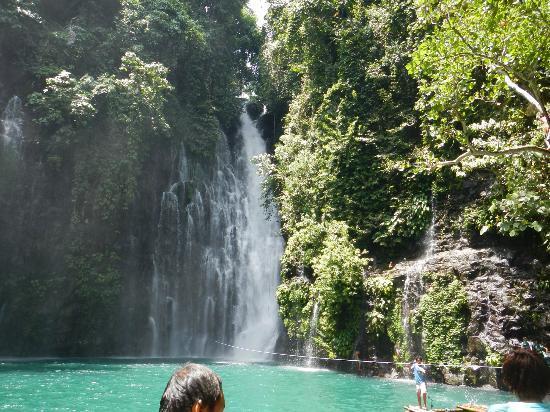 Tinago Falls : The falls from afar.