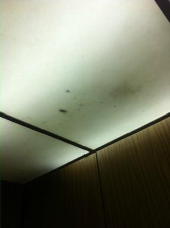 Coastal Palms Inn & Suites: Ceiling in elevator..no lighting at ALL!