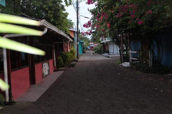 Casa Marbella: Tortuguergo Village