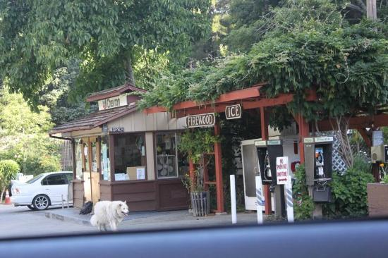 Ripplewood Resort: Garage and General Store
