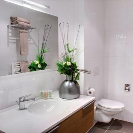 Best Western Hotel Des Barolles - Lyon Sud : Guest Bathroom