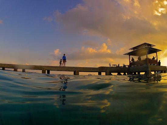 Wakatobi Dive Resort: jetty