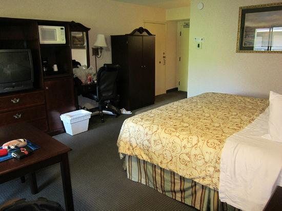 BEST WESTERN PLUS Inn at the Vines: More of the room