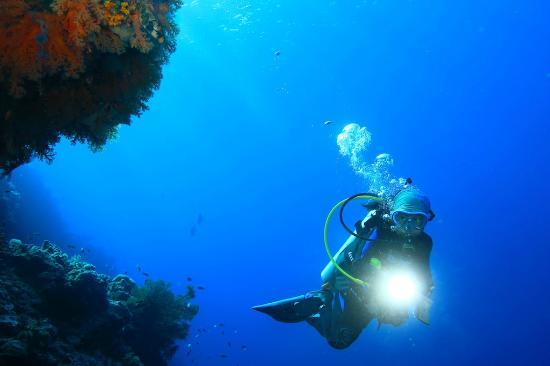 Wakatobi Dive Resort: my 10 years old doughter