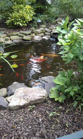 Cross House Garden Inn: Koi Garden on Inn Grounds