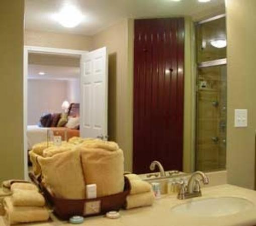 Alaska Sundance Retreat Bed and Breakfast, LLC: Executive Apartment Bathroom