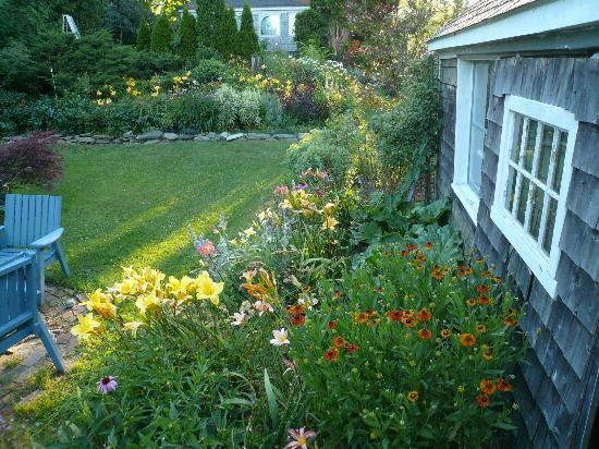 Le Vatout Bed and Breakfast: Lily borders