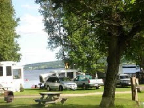 Great Bear Camping