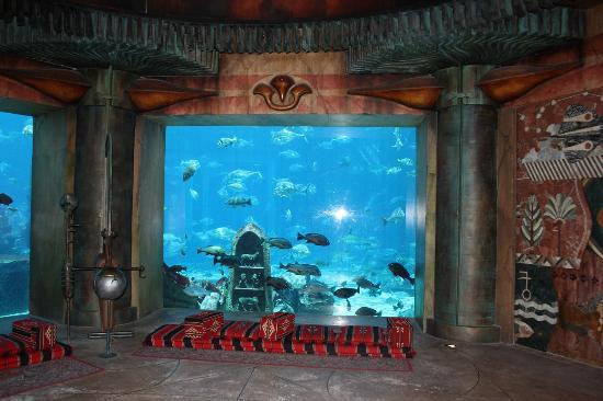 The lost chambers - Picture of The Lost Chambers Aquarium, Dubai ...