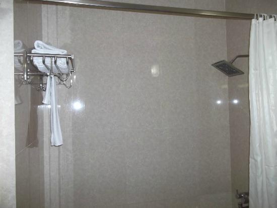 Hotel Taj Inn: Rain shower in bathroom