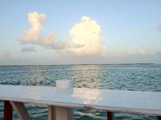 WildQuest : bay side view near the dock