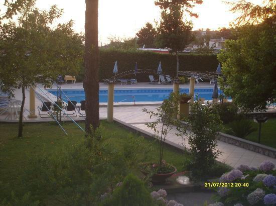Hotel Delle Palme: piscina