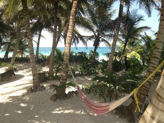 Casa de las Olas: one of many hammocks