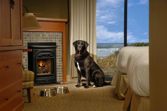 Long Beach Lodge Resort: 100% Pet Friendly