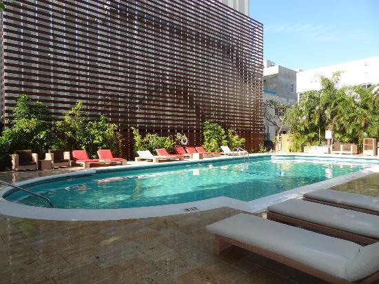 la piscine - Picture of Dorchester Hotel, Miami Beach - TripAdvisor