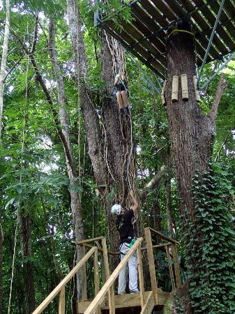 JungleQui Rainforest EcoAdventure Park: a short rappel