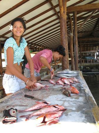 Motu Aito : Préparation des poissons pêchés au petit matin...