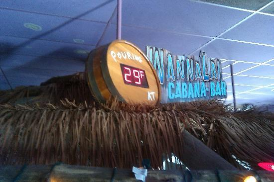 Cheeseburger In Paradise: CIP's Wannalai Cabana Bar; draft beer pouring at 29 degrees!